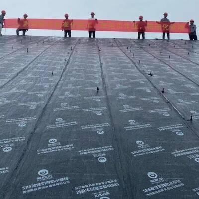 兴义SBS改性沥青防水卷材